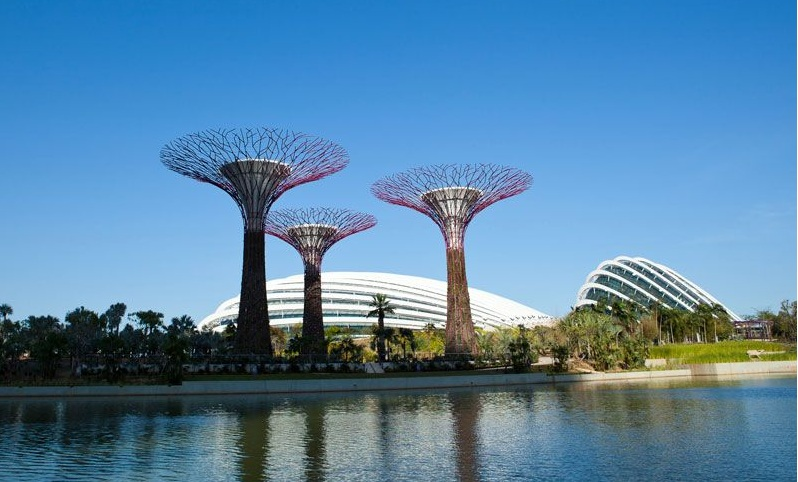 singapour batiment architecture Les serres écologiques de Singapour élues Bâtiment de lannée 2012