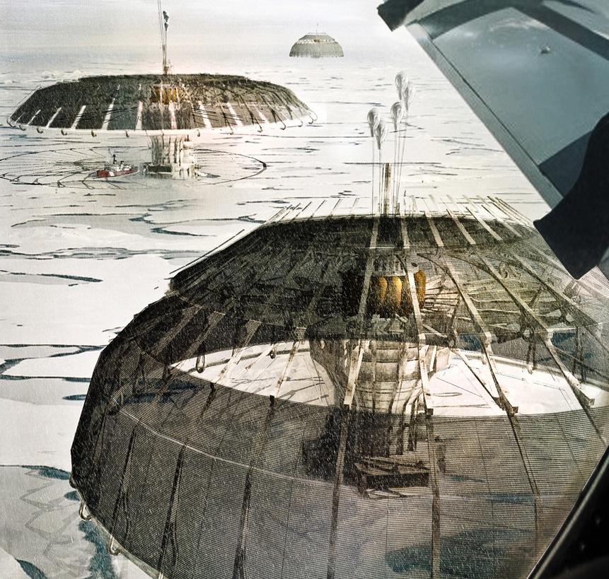 Derek-Pirozzi-polar-umbrella