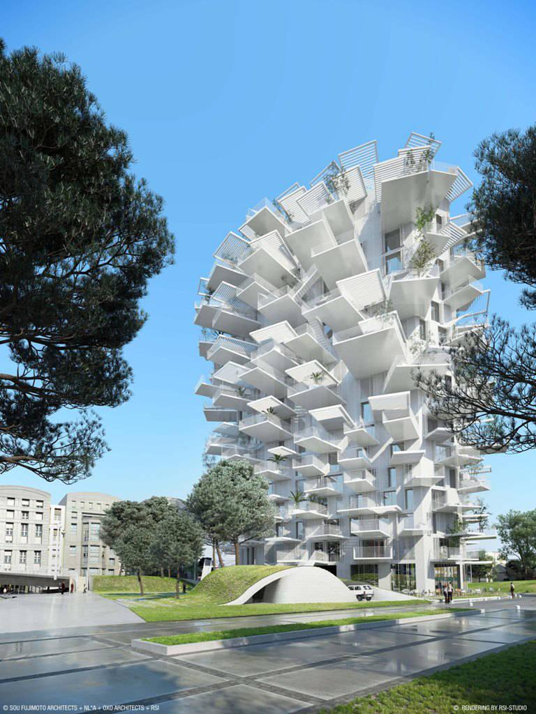 tour-logement-montpellier-arbre-blanc