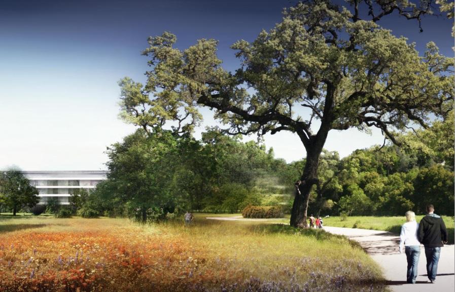 bureau-apple-campus-californie-cupertino