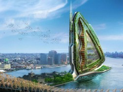 dragonfly-ferme-verticale-agriculture-biologique-urbaine-callebaut-new-york