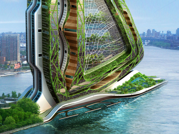 dragonfly-structure-vegetale-ferme-urbaine-callebaut-new-york